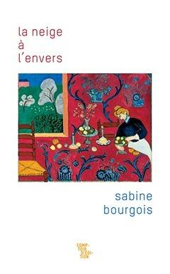 Sabine Bourgois  la neige à l'envers