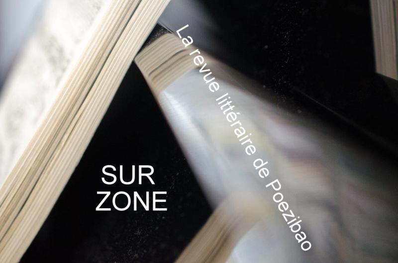 Image Sur Zone réduite