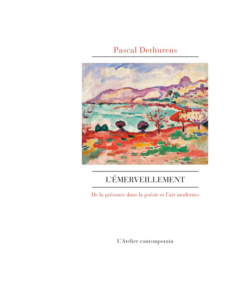 Pascal Dethurens  l'Emerveillement