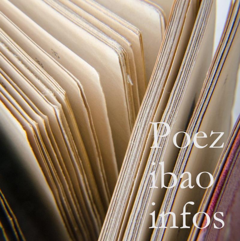 Cul de lampe poezibao info
