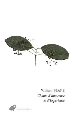 William Blake  chants d'innocence et d'expérience