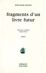 09_valente_fragments
