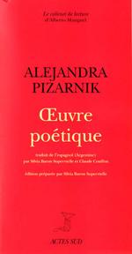 110106_pizarnik