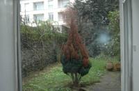 Emaz_jardin_par_tristan_copie