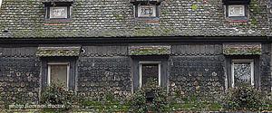Alsace_fentres_copie
